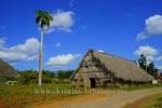 Tabakhuette, Bei einem privaten Tabakbauern in Valle de Vinales (das Tal von Vinales), Cuba, 21.01.2015 [(c) Christian Behring, www.christian-behring.com]