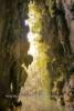 Cueva de los Cimarrones, Valle de Vinales (das Tal von Vinales), Cuba, 21.01.2015 [(c) Christian Behring, www.christian-behring.com]