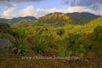 Aussichtspunkt im Parque Nacional Topes de Collantes, Topes de Collantes, Cuba, 22.01.2015 [(c) Christian Behring, www.christian-behring.com]