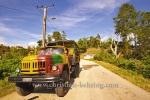, Topes de Collantes, Cuba, 23.01.2015 [(c) Christian Behring, www.christian-behring.com]