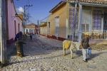 Bauer mit Esel in einer Strasse in der Altstadt, Trinidad, Cuba, 24.01.2015 [(c) Christian Behring, www.christian-behring.com]