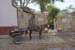 Pferdefuhrwerk in der Altstadt, Trinidad, Cuba, 24.01.2015 [(c) Christian Behring, www.christian-behring.com]